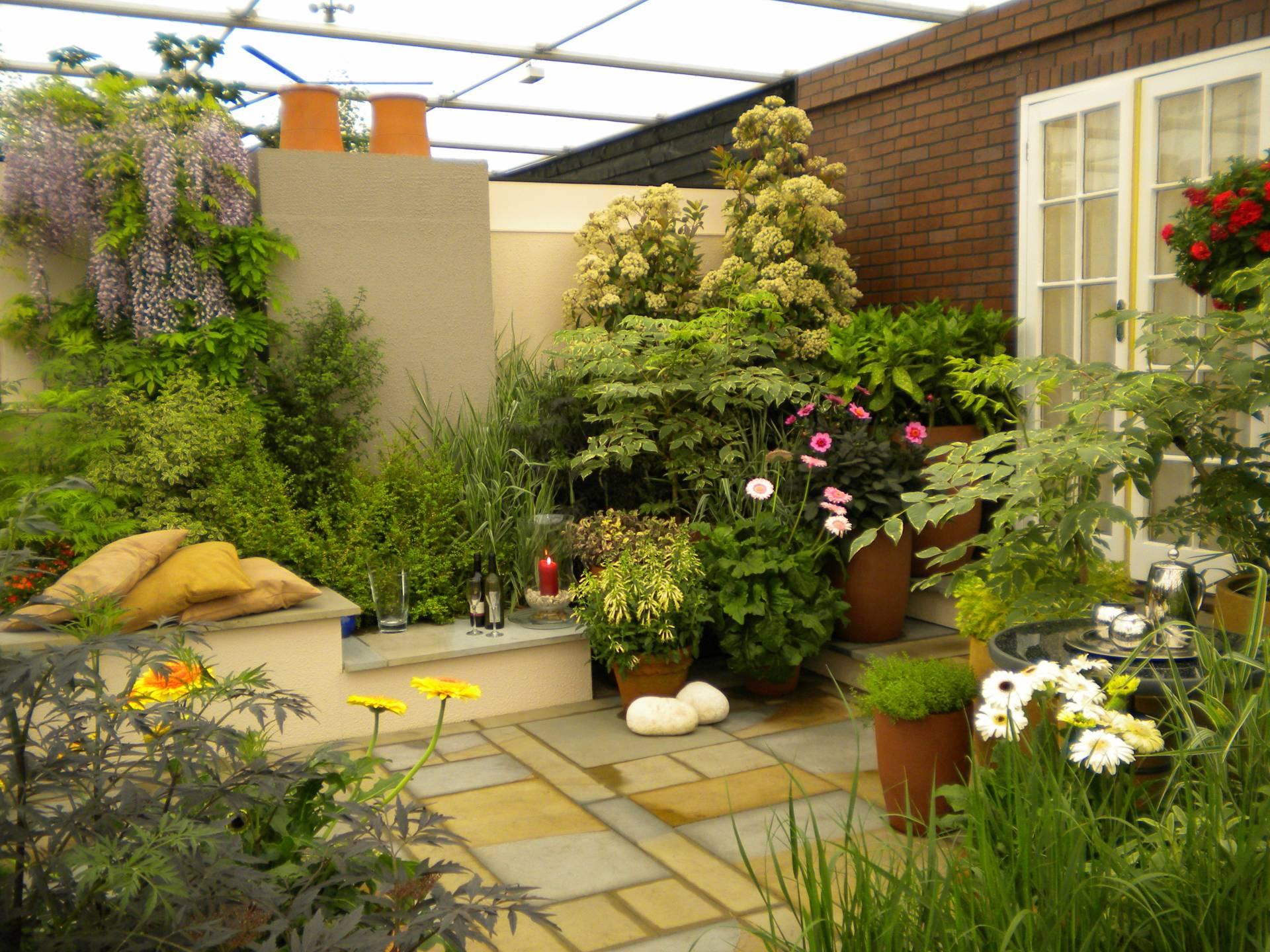 Зимний сад на крыше частного дома своими руками: проект, уст.