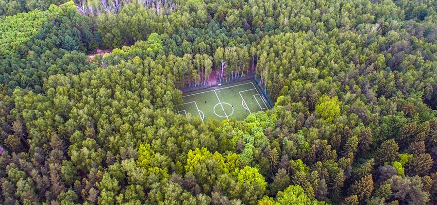 In the forest or on the field :)